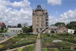 4. Villa Augustus