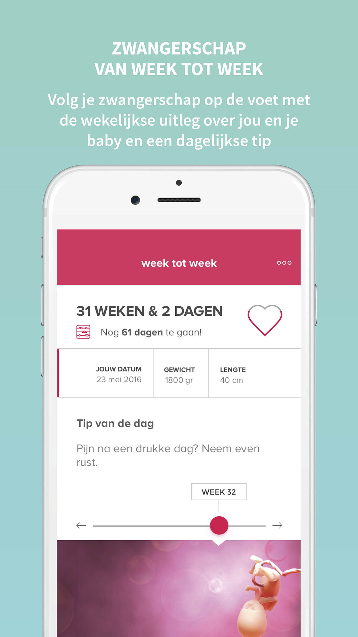 zappy app week tot week