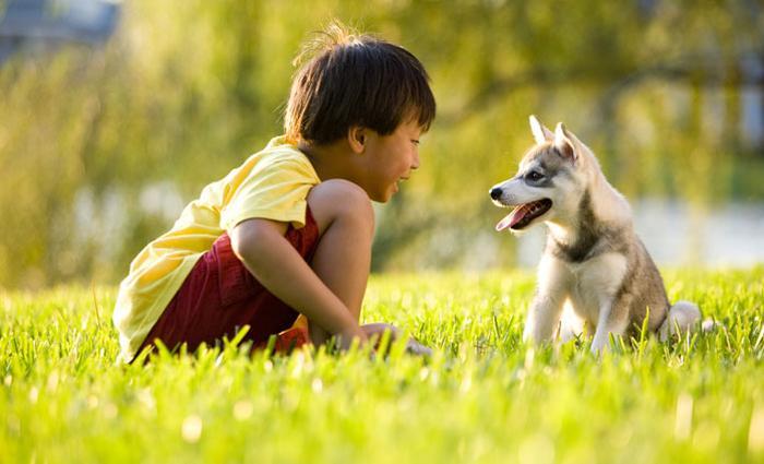 Gezocht: foto's van kinderen met hun huisdier