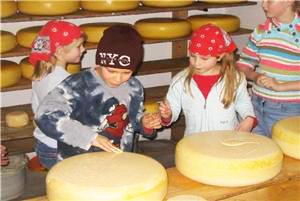 Kaasboerderij Sol kinderfeestje Hazerswoude