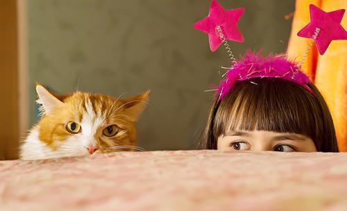Katten versus kids