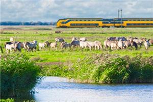 4 Mooiste treinreis