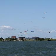 Vliegerfestival Pampus voor de wind Muiden