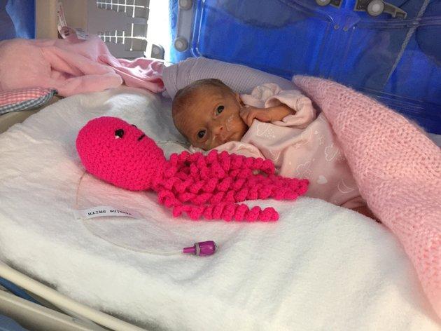 Octopus Knuffel Houdt Premature Babys In Leven Ouders Van Nu