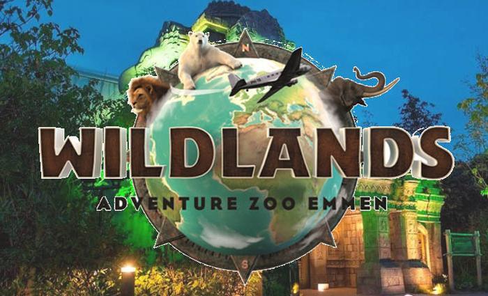 Wildlands Wildnight