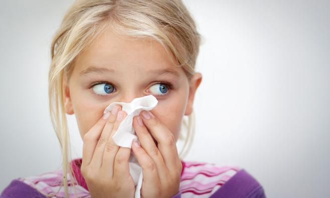 Matras Allergie Huisstofmijt : Allergie voor huisstofmijt ouders van nu