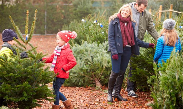 8x gezellige kerstuitjes met het hele gezin