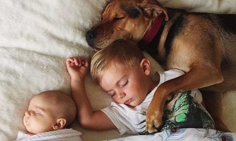 Broertje en zusje doen dutje met hond