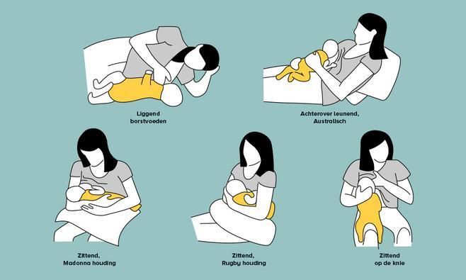 borstvoedingshoudingen