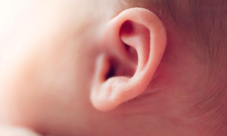 Het gehoor van je baby: ontwikkeling en screening