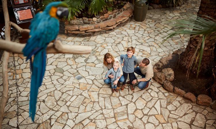 3 leuke attractieparken voor jong én oud