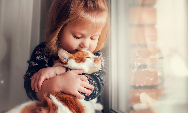 Kattenkrabziekte bij kinderen