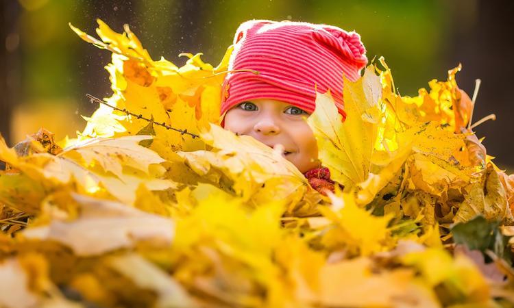 9 leuke dingen om te doen in de herfst