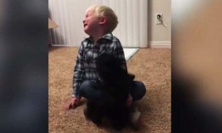 Jongetje ontroerd als hij een hondje krijgt