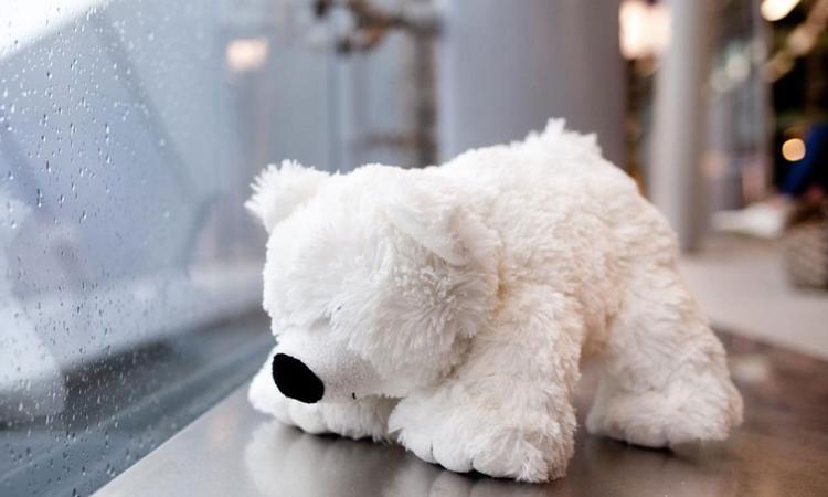 Lief: NS herenigt deze week verloren knuffels met hun eigenaar