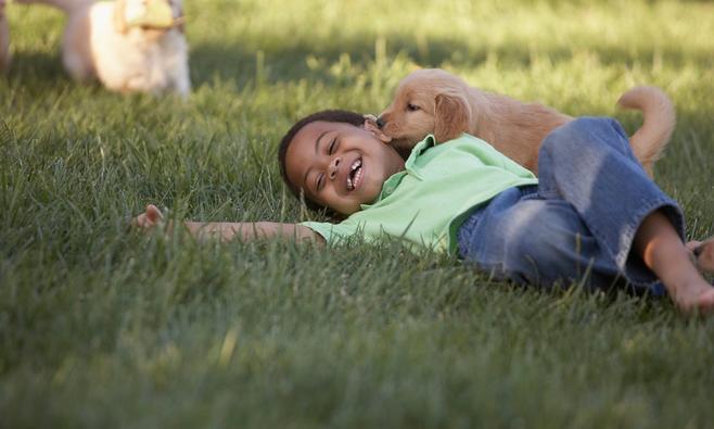 Doe je kind een lol: haal een hond in huis