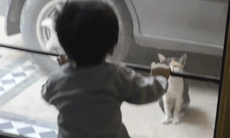 Schattig: peuter praat met kat
