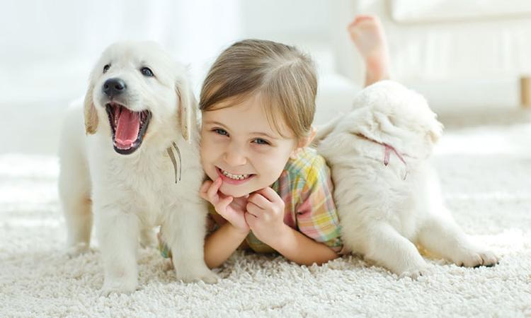 Welke invloed heeft een huisdier op je kind?