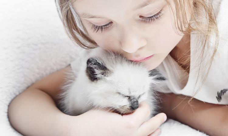 voordelen huisdier