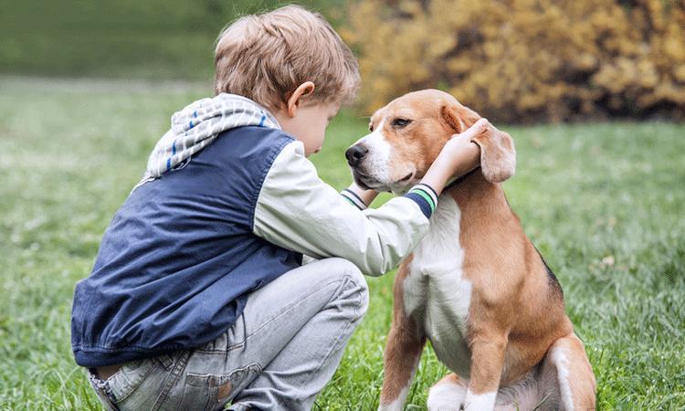Onderzoek: 'In gezinnen met een huisdier wordt minder geruzied'