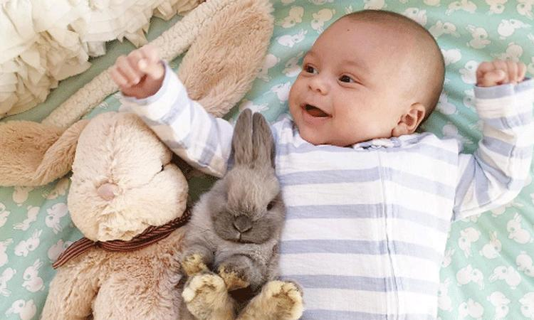 Baby heeft bijzondere band met konijnen