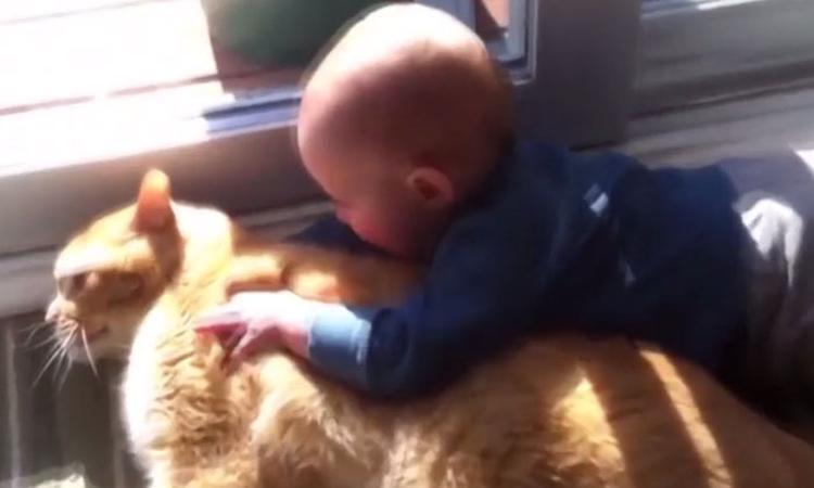 Aandoenlijk: baby's knuffelen met hun huisdier