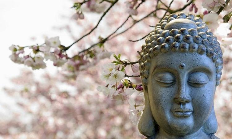 10x boeddhistische opvoeding