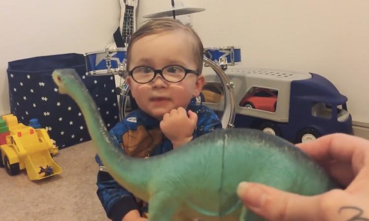 Schattig jongetje is dinosaurus-expert