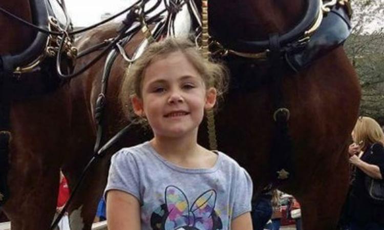 Meisje wordt 'gephotobombed' door vrolijk paard
